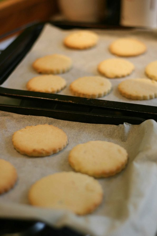 iced biscuit recipe
