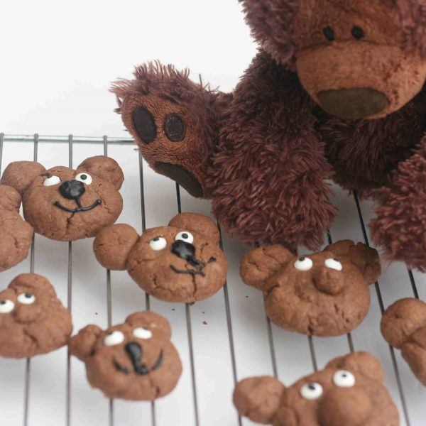 everywhere bear biscuits