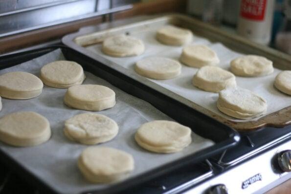 homemade english muffins before proving